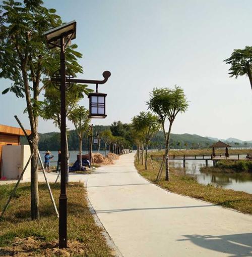 惠州太阳能路灯工程