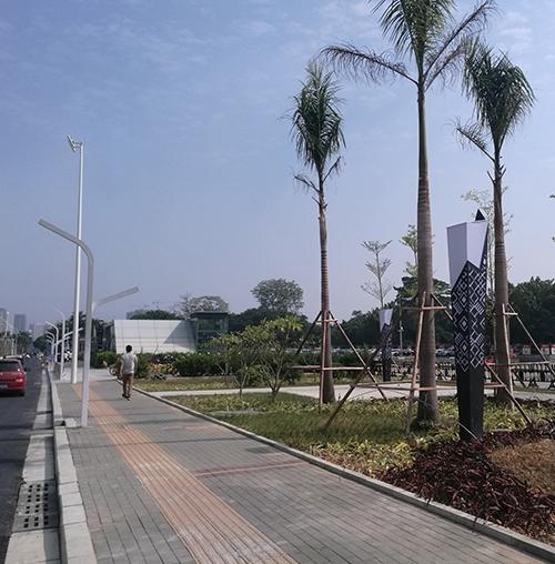 广西南宁大学路景观路灯工程